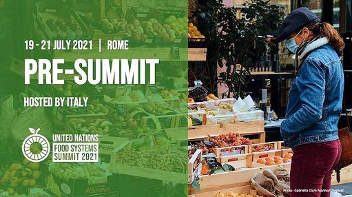 Italy to set the stage for UN Food Systems Summit